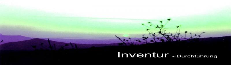 Inventur Durchführung