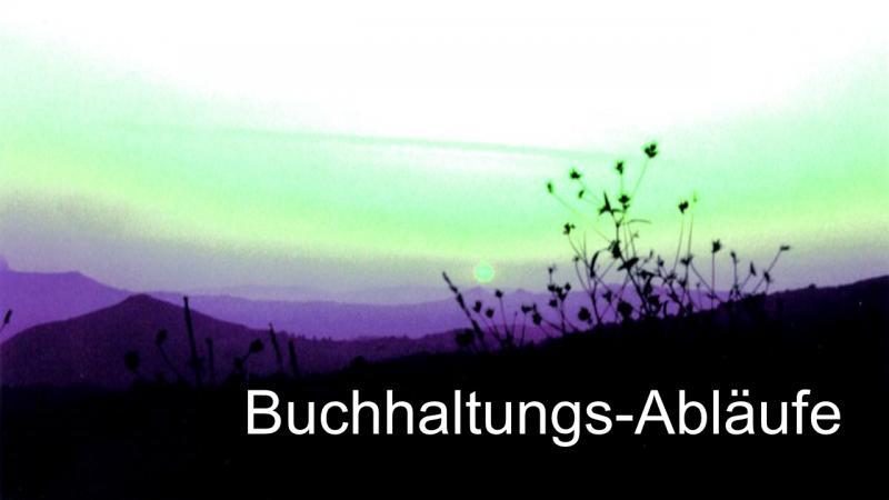 Steuerberatung für GmbH Bilanz Jahresabschluss 67 Buchhaltungsabläufe