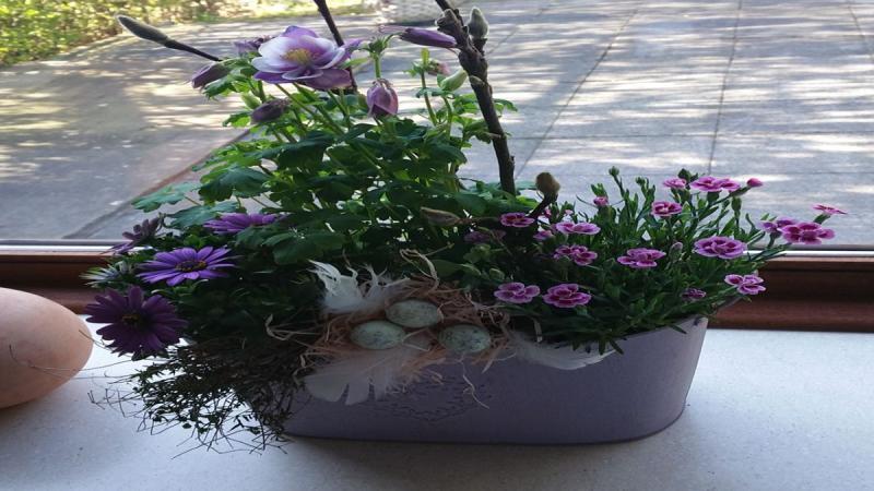 Korb Blumen Zukunft