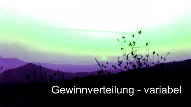 Variable Gewinnverteilung