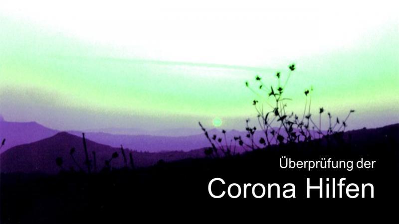 Überprüfung der Corona Hilfen