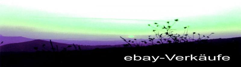 ebay Verkäufe steuerlich