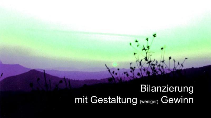 Steuerberater für GmbH Bilanz Jahresabschluss Bilanzierung Gestaltung weniger Gewinn 1200675