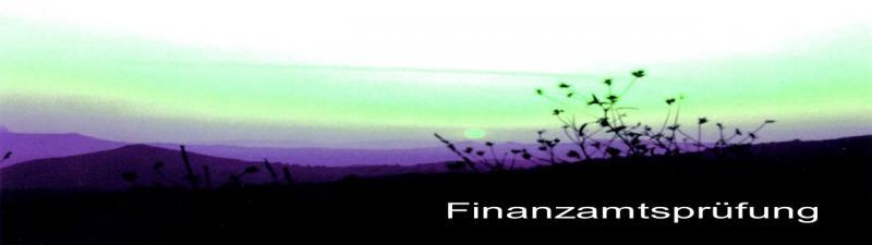 Finanzamtsprüfung erklärt Steuerberater