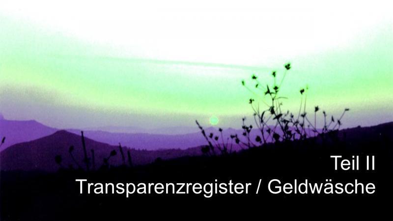 Transparenzregister Geldwäsche Teil II