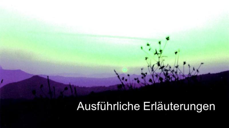 Steuerberatung für GmbH Bilanz Jahresabschluss 67 Ausführliche Erläuterungen