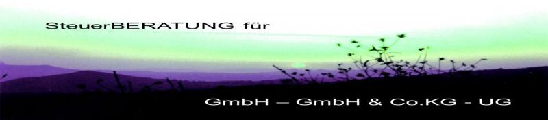Steuerberatung für GmbH