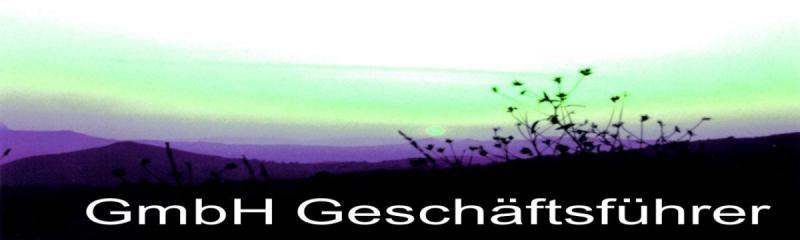 GmbH Geschäftsführer mit Steuerberater
