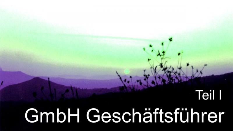 Steuerberater Hamburg zu GmbH Geschäftsführer Teil 1